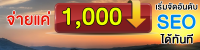 จ่ายแค่ 1000 เริ่มทำSEO ได้ทันที